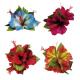 3 hibiscus avec barrette