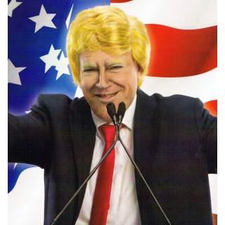 Perruque Donald Trump