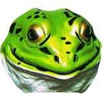Masque enfant grenouille